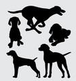 vizsla dog animal action silhouette vector image vector image