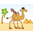camel parrot vector image vector image
