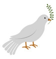 isolated pigeon icon vector image vector image