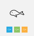 of zoo symbol on whale outline vector image