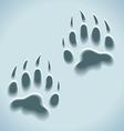 prints in snow wild animal tracks vector image