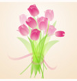 spring fresh bouquet of tulips vector image