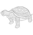 adult coloring bookpage a cute turtle image vector image vector image