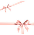 color pink bow element vector image