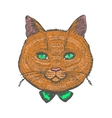 ginger cat vector image