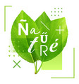 green leaves with an inscription nature vector image