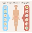 Gynecology vector image