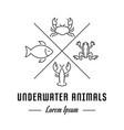 line banner underwater animals vector image