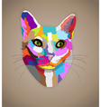 Pop art colorful cat vector image