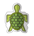turtle animal isolated icon vector image vector image