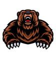 bear mascot logo vector image vector image