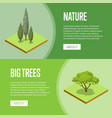 big trees and decorative plants posters vector image