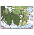 Bunch of grape leaves hand drawn vector image vector image