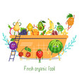 cute funny fruit characters in salad bowl flat vector image