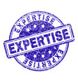 grunge textured expertise stamp seal vector image vector image