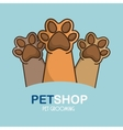 Pet feets up isolated icon vector image