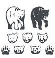 Set of bears for emblems and labels vector image vector image