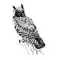 owl hand drawn ink isolated vector image