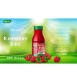 raspberry juice bottle on green grass fruit juice vector image vector image
