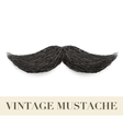 Realistic Black vintage curly mustache vector image vector image