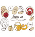 apples set vector image