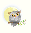 baanimal owl watching at night sitting on the vector image