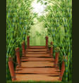 bamboo forest with wooden bridge vector image vector image