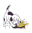 cheerful dog digging ground near cultivated plant vector image vector image