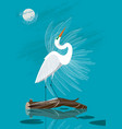 great white egret vector image vector image