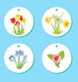 set of labels with spring april flowers for easter vector image vector image