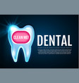 shining helthy tooth with lights cleaning teeth vector image