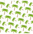tropical palm nature tree background vector image vector image