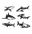 variety shark silhouette set vector image vector image