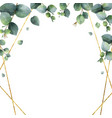 watercolor frame with green eucalyptus vector image vector image