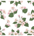 Seamless floral pattern apple tree flowers vector image