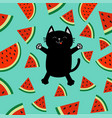black cat jumping or making snow angel watermelon vector image vector image
