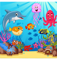 funny cartoon sea life for you design vector image vector image