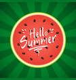 watermelon with text hello summer vector image vector image