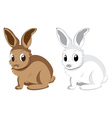 White and brown rabbits2 vector image vector image