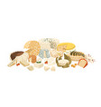 composition different cheese assortiment vector image