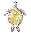 contour black and white of turtle vector image
