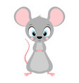 cute rat isolated on white vector image vector image