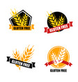 gluten free label intolerance circle badge vector image vector image