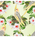 seamless texture yellow cockatiels cute funny vector image vector image