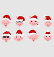set christmas pigs with santa hats symbol 2019 vector image vector image