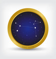 canis major constellation in golden circle vector image vector image