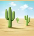 cordon cactus or vector image
