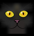 Eyes of a black cat vector image vector image