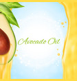 fresh avocado slice with oil vector image vector image