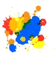 isolated spot blots vector image vector image